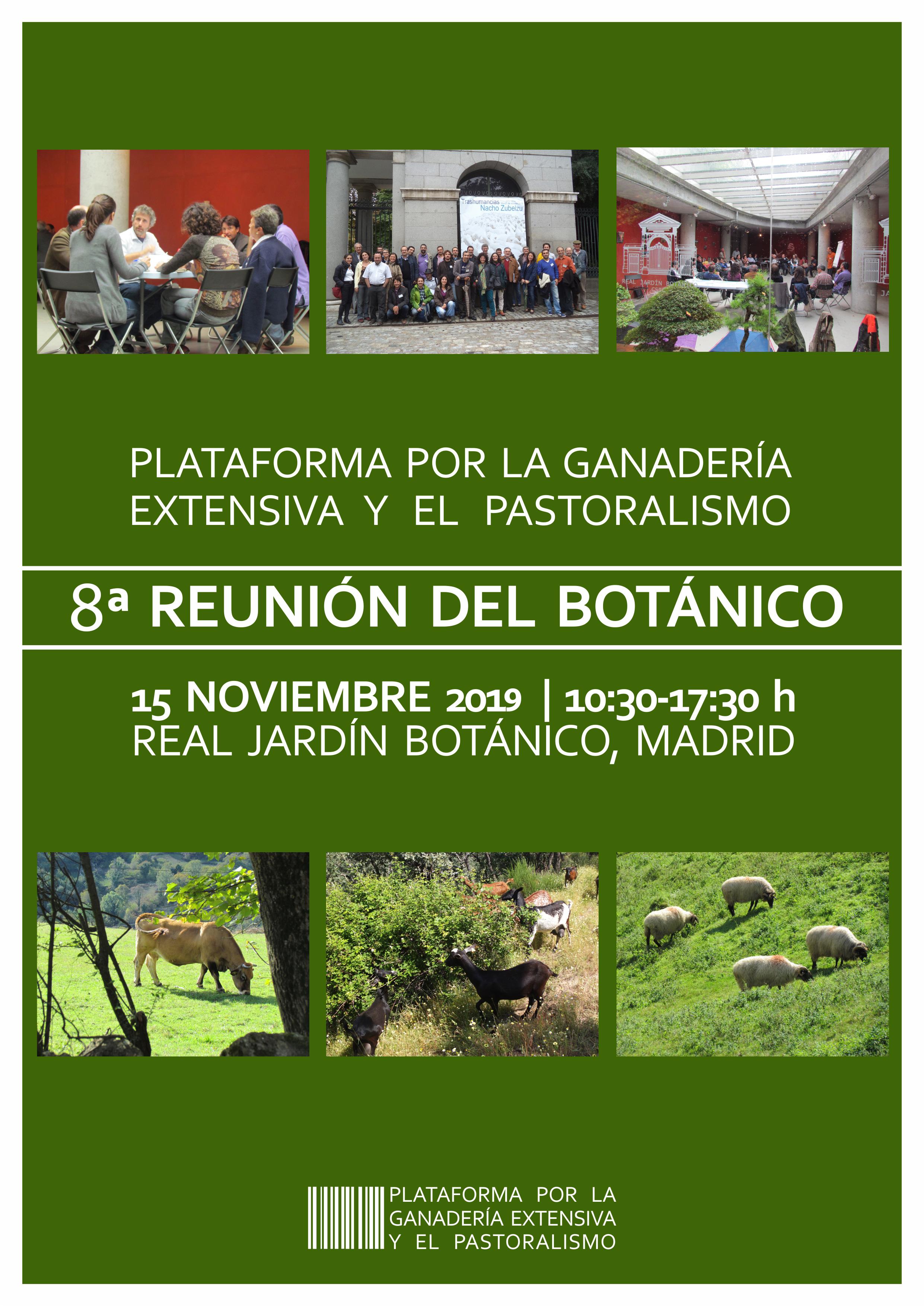 VIII Reunión del botánico